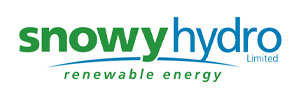 snowy hydro renewable energy